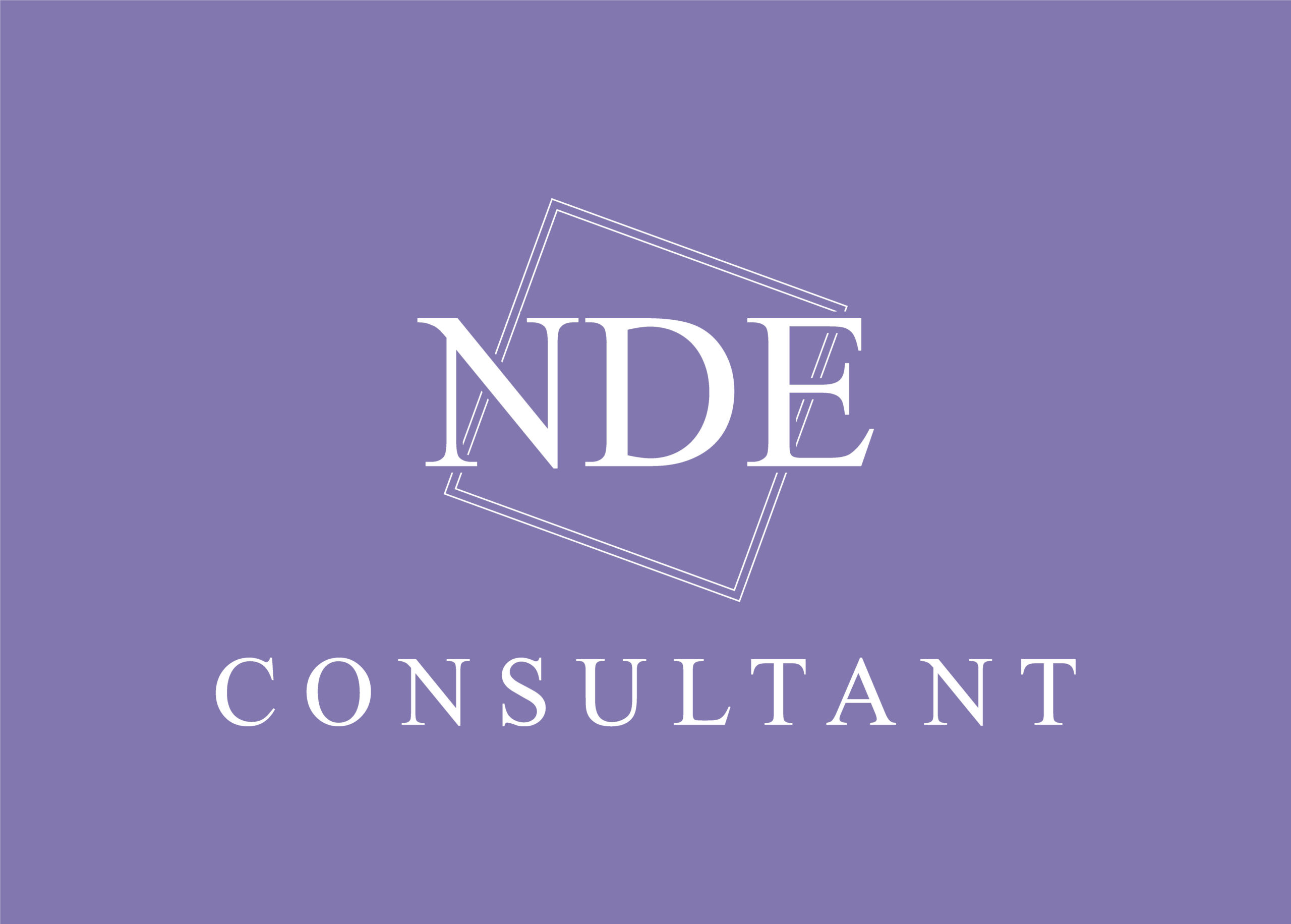 NDE Consultant